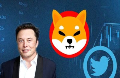 Elon Musk Brings New Cryptocurrency 'Baby Doge' To Spotlight; Its Price Doubles After One Tweet